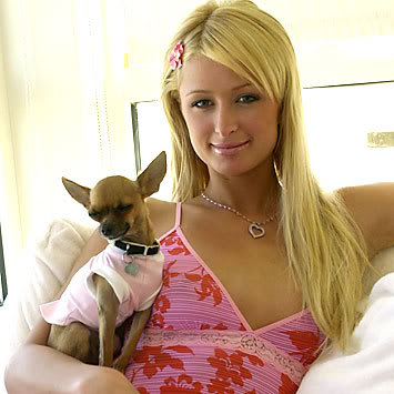 image of paris hilton