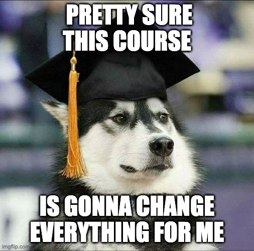 Image of a husky in a graduation cap